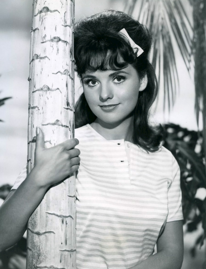 Dawn Wells Bra Size