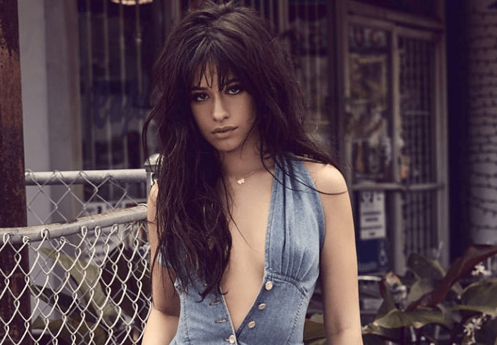Camila Cabello Body Measurements