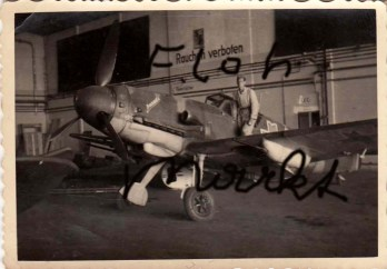Domniţa (can also mean Young Lady, Princess or Sweetheart in English) resting her wings in a German hangar in Ukraine.