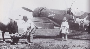 Nina (IAR 80 plane flown Gheorghe Grecu) from Fighter Group 2, babbysitting a couple of boys and their pet cow in the summer of 1944 Welcome to Romania!