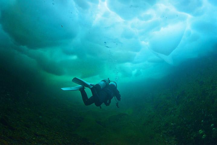 Ice Diver (Photo Credit - PADI)