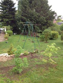 Une vue d'ensemble des lignes tutrices servant de support aux houblons dans le jardin de la Brasserie du Vallon