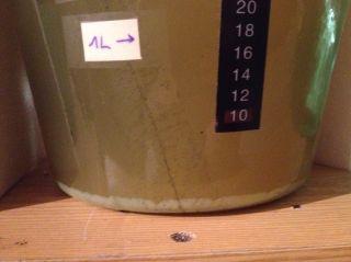 La fermentation de l'hydromel S-23 commence à ralentire, mais il n'y a pas encore autant de levures au fond du fermenteur que l'hydromel T-58