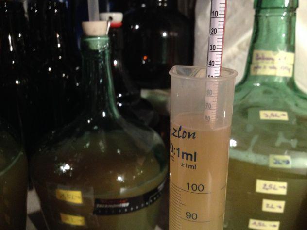 La densité de mon moût de miel est exactement de 1.080 à 20°C comme prévu. C'est parti pour faire fermenter l'hydromel !