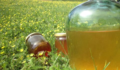 gros plan d'un hydromel artisanal et de miels artisanaux d'Alsace