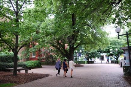 Saiba como buscar uma boa Universidade na Austrália     BRaustralia.com