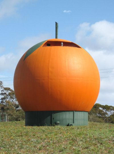 800px-Big_Orange