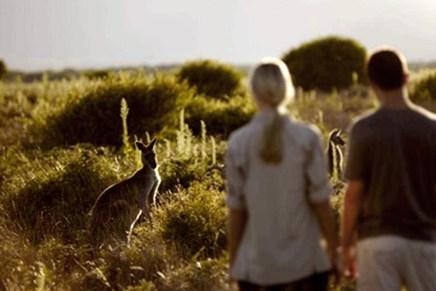10 oportunidades de trabalho voluntário para ajudar a preservar da natureza e economizar dinheiro viajando pela Austrália e Nova Zelândia