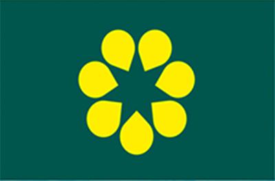 australian_flag5