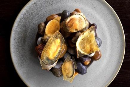 """Melhor chef de cozinha do mundo abre """"pop-up restaurant"""" na Austrália que serve carne de canguru, crocodilo, formigas e até Vegemite!"""