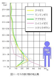 cicada030-1.jpg