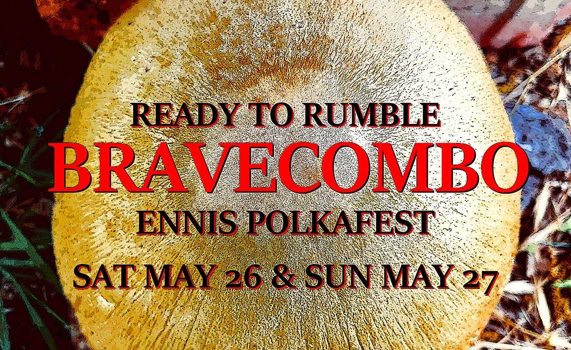 Ennis Polka Festival 2018