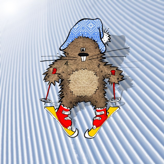 monty the marmot goes skiing