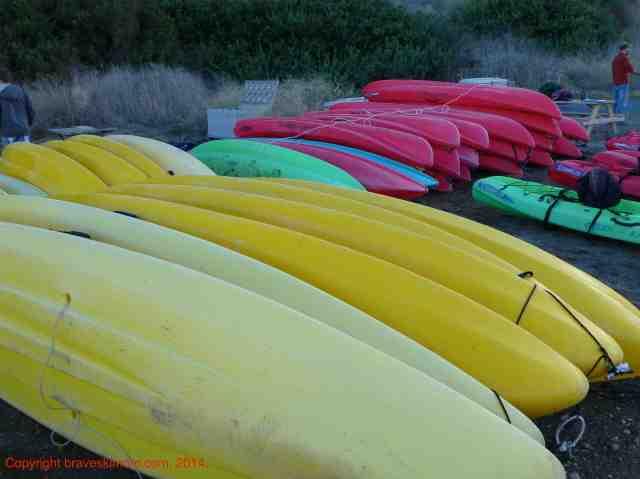 kayaks santa barbara adventure company