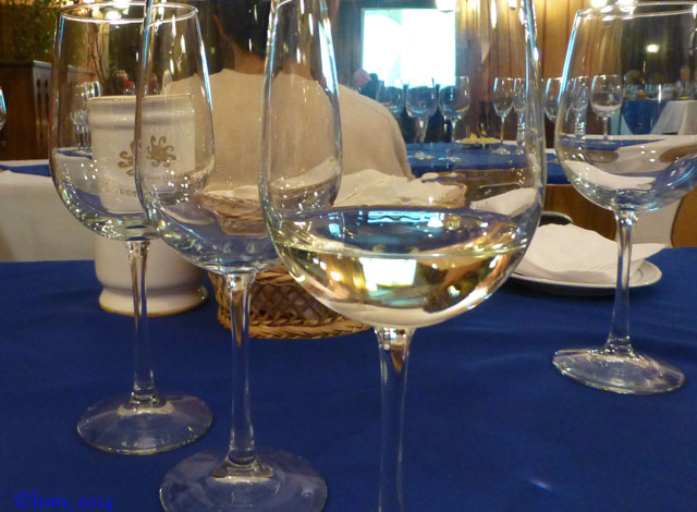 wine tasting portillo