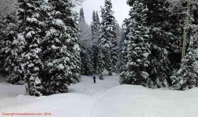 ski powder canyons utah