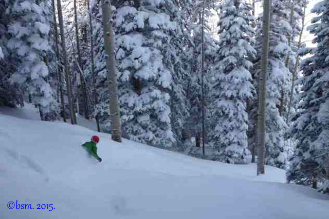powder skiing powderhorn