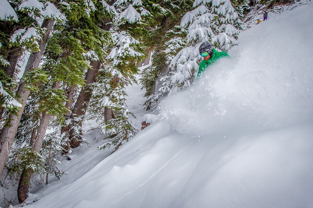 mount hood meadows tree skiing