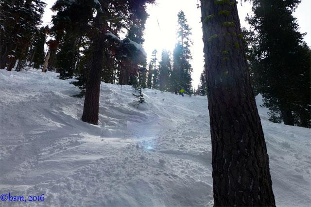 northstar sugar pine glades
