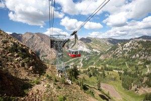 snowbird summer tram