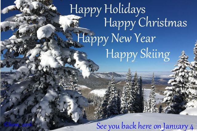 happy holidays braveskimom