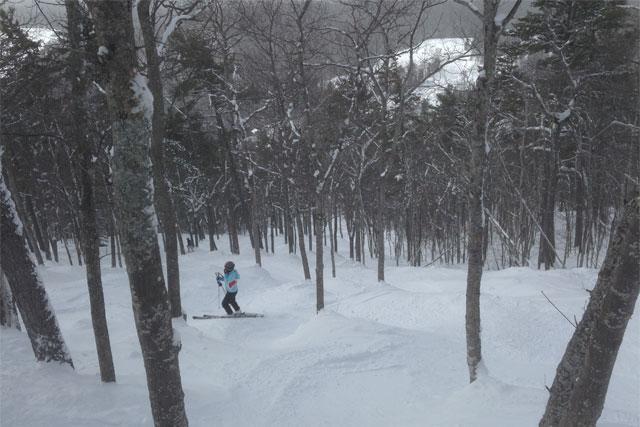 mount bohemia glade skiing