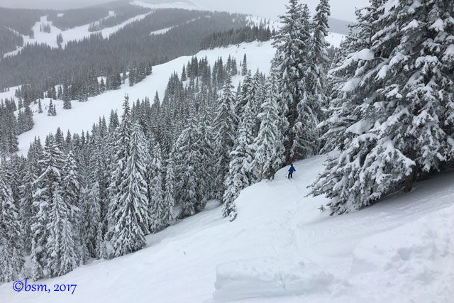 northwoods at vail