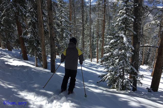 windows tree skiing at keystone