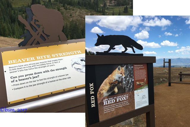 learn through play exhibits epic discovery breckenridge