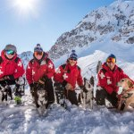 Snowbasin Resort Avalanche Dogs Pay Their Own Way at Annual Fundraiser