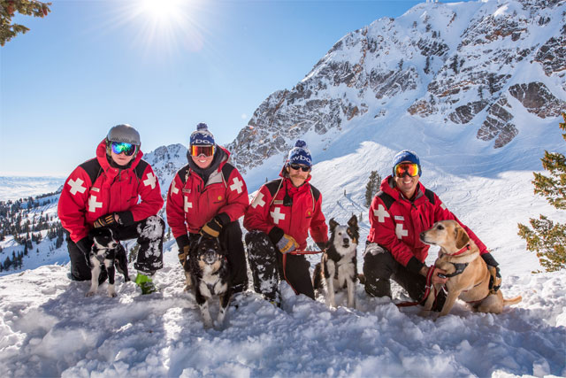 snowbasin, avalanche rescue dogs