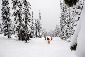 "Montana's Whitefish Mountain, aka ""The Perfect Ski Resort"""