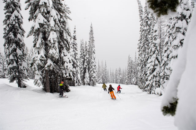 "Montana's Whitefish Mountain, aka ""The Perfect Ski Resort"""
