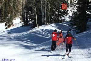 replacing-signs-powderhorn-ski-patrol-ski-along.jpg