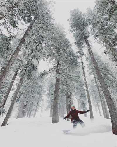powder day skiing the trees at ski santa fe