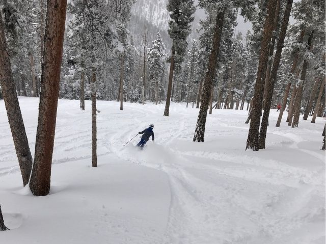 Glade skiing that is fun and moderate at Angel Fire New Mexico another of the five reasons to ski angel fire