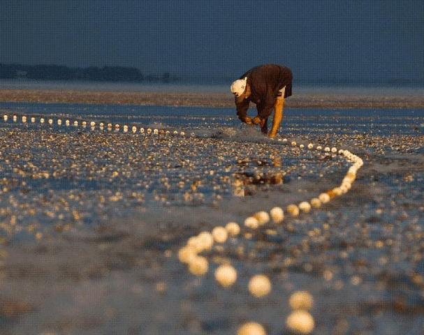 Fisherman in Ilha do Mel- photo by Priscila Foronel
