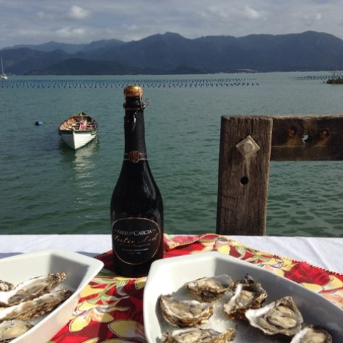 Local tastes- Oysters and Sparkling Wine from Santa Catarina