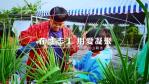 首波花博志工招募影片 以在地志工邀民眾共同響應