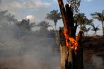 亞馬遜雨林火災今年已逾7萬宗,濃煙蔓延籠罩巴西城市上空