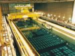 核廢料新用途:化學催化劑