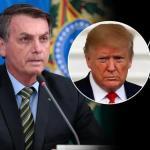 【月刊】巴西經濟月刊 2020年 10月