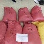 哥斯大黎加與聯合國簽諒解備忘錄 打擊集裝箱販毒