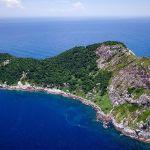 巴西蛇島:禁止人類踏足,最稀有的蛇每條價值3萬美元