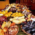 秘魯有座玉米博物館:玉米文化的發源地,好吃好玩還好看!