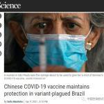 在P.1變異毒株氾濫的巴西,中國科興疫苗的有效性幾何?
