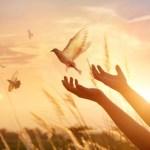 人們的懷念與希望(四)