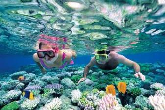 catalina-island-snorkel-excursion-from-punta-cana-in-punta-cana-183371