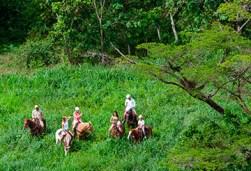 img_paseo-caballo