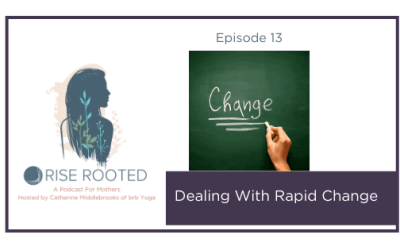 Ep. 13: Dealing With Rapid Change